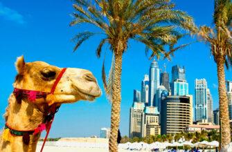 Туризм в ОАЭ. Эмиратс Пэлас
