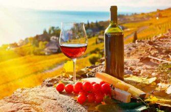 Инсентив в Грузии - «Горы и Вино»